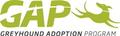 Greyhound Adoption Program