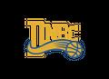 Dulwich Newtown Basketball Club