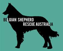 Belgian Shepherd Rescue Australia Logo