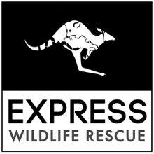 Express Wildlife Rescue and Rehab INC Logo