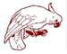 Karabi Community and Development Services Inc logo