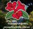 Emu Valley Rhododendron Garden logo