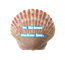 St Helens Online Inc, logo